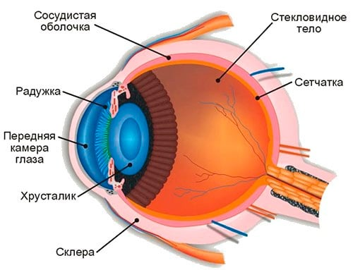 Как называется операция по замене хрусталика глаза